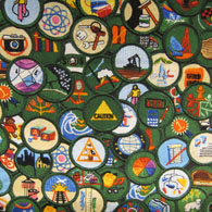 Girl Scouts Fabric